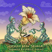 Erykah_badu_soldier-Emek Art